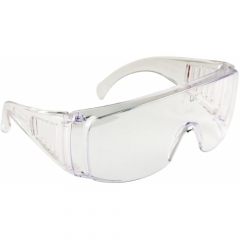 Portwest Protection Glasses Visitor